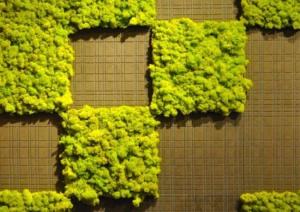 green moss tiles
